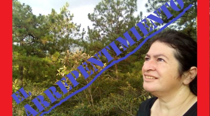 Un Llamado al Arrepentimiento / Lilian Marily Alvarado.